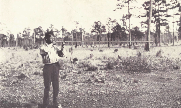 The Choctaw of Bayou Lacomb