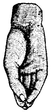 Fig. 135