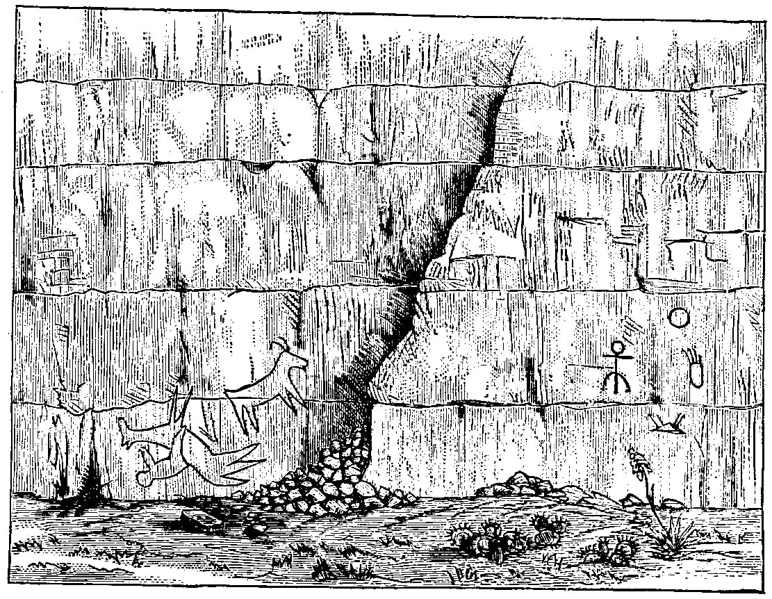 Fig. 225