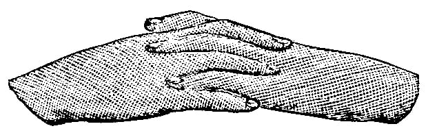 Fig. 231