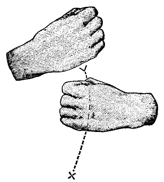 Fig. 242