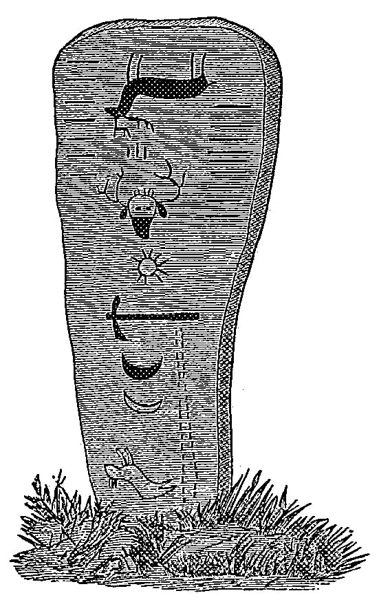 Fig. 249