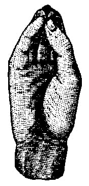 Fig. 256