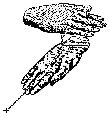 Fig. 272