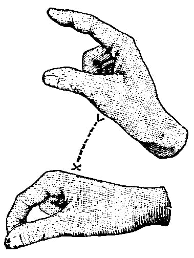 Fig. 280