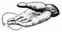 Phrases – Sign Language
