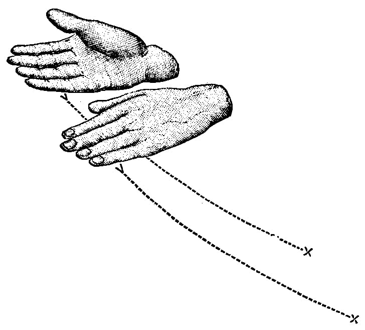 Fig. 326