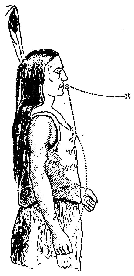 Fig. 344