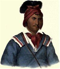 Foke Luste Hajo, Seminole Chief