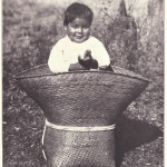 The occupant of this basket is a full blooded Choctaw boy of about 2 years of age.