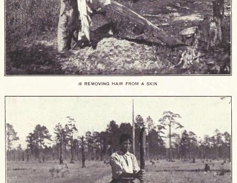 Choctaw Tanning Method