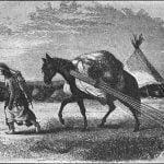 Horse Travels