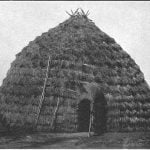 Wichita Indians grass-covered lodge, about 1880