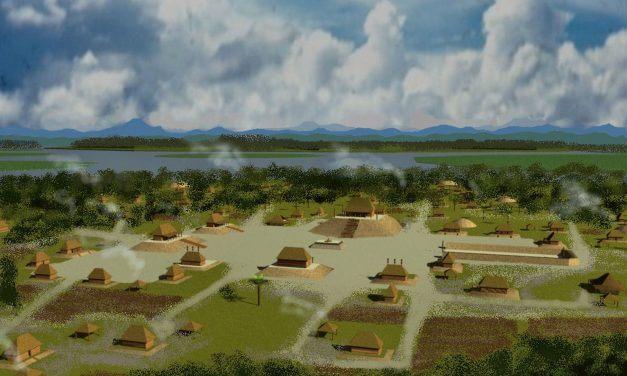 Tabasco and Chiapas