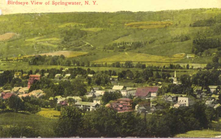 Early History of the Town of Springwater New York