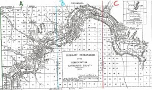 Allegany Reservation Map, 1890