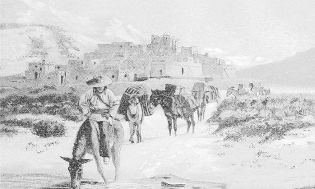 Condition of 16 New Mexico Indian Pueblos in 1890