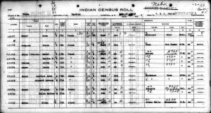 Ponca Census Image