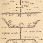 Outline of plan of Pamunkey bush-fences