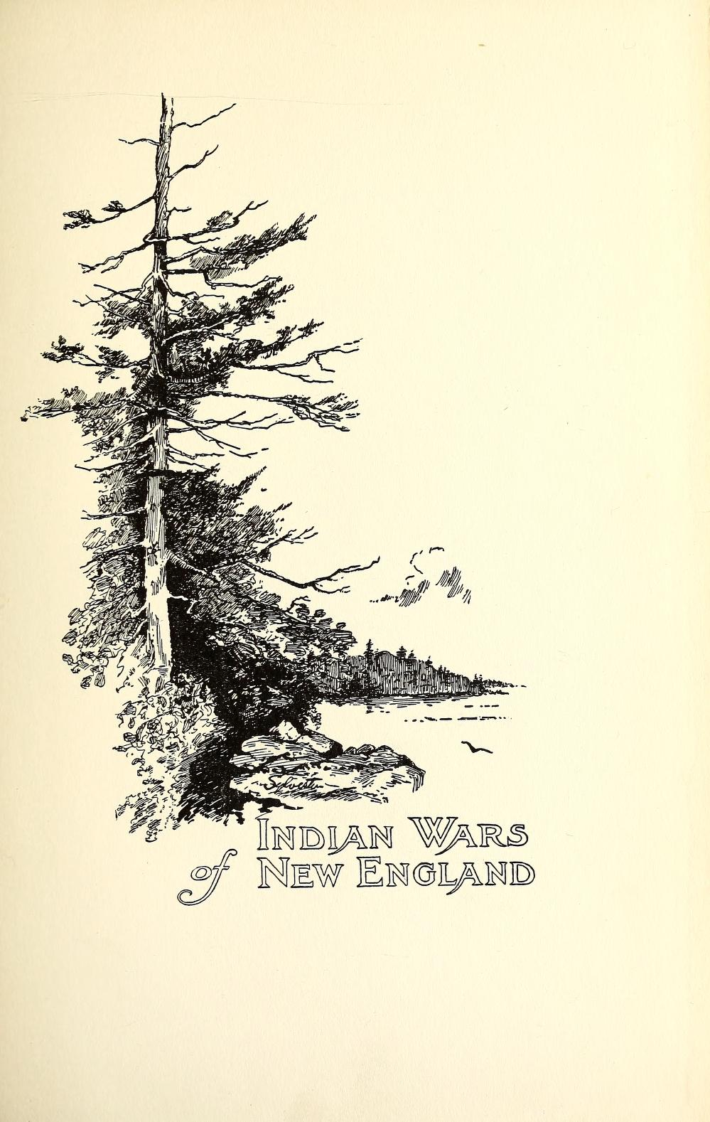 the indians and europeans of new england Native american history is made additionally complex by  for pre-columbian contact between native americans and europeans  in new england and the .