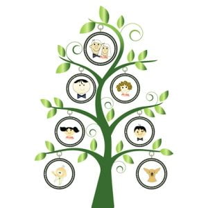family-tree-white