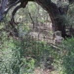 Frio County Texas Cemeteries